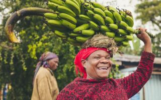 Банан — интересные факты