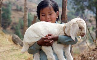 Непал — интересные факты