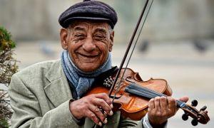 Скрипка — интересные факты
