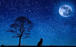 Созвездия — интересные факты