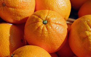 Апельсин — интересные факты