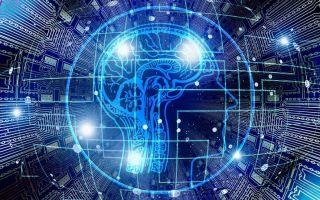 Мозг — интересные факты