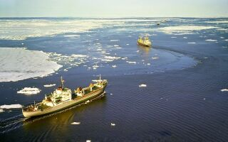 Карское море — интересные факты