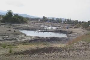 Некоторые озера в Солотвино похожи на болото, но они с целебной водой