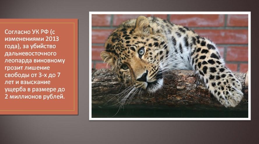 Наказание за браконьерство
